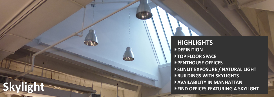 Skylight Commercial Real Estate Definition Footer